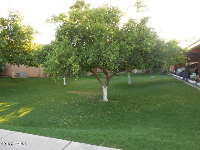 MLS 5871540 1942 S EMERSON -- Unit 202, Mesa, AZ Mesa AZ Dobson Ranch Golf