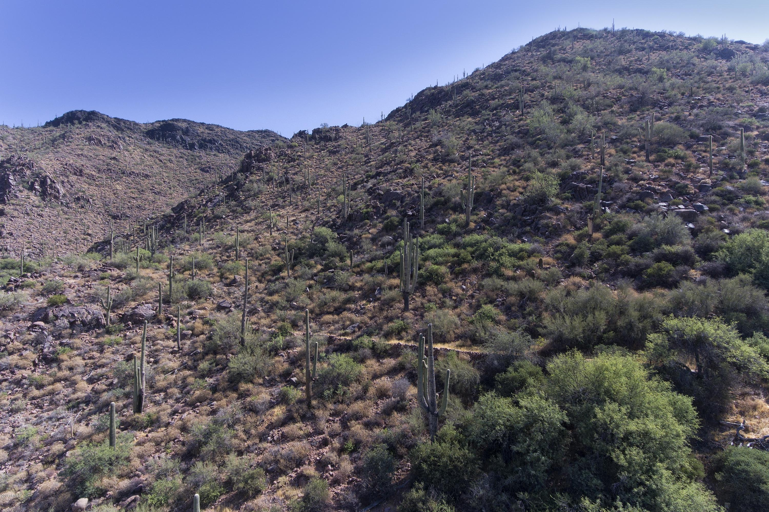 MLS 5876410 43190 N 79th Street, Cave Creek, AZ Cave Creek Horse Property for Sale
