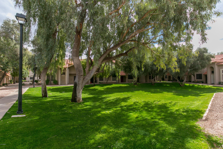 MLS 5879995 500 N ROOSEVELT Avenue Unit 63, Chandler, AZ 85226 Chandler AZ Townhome