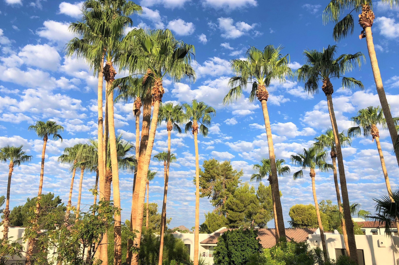MLS 5880194 7350 N VIA PASEO DEL SUR -- Unit L203 Building L, Scottsdale, AZ Scottsdale AZ Golf