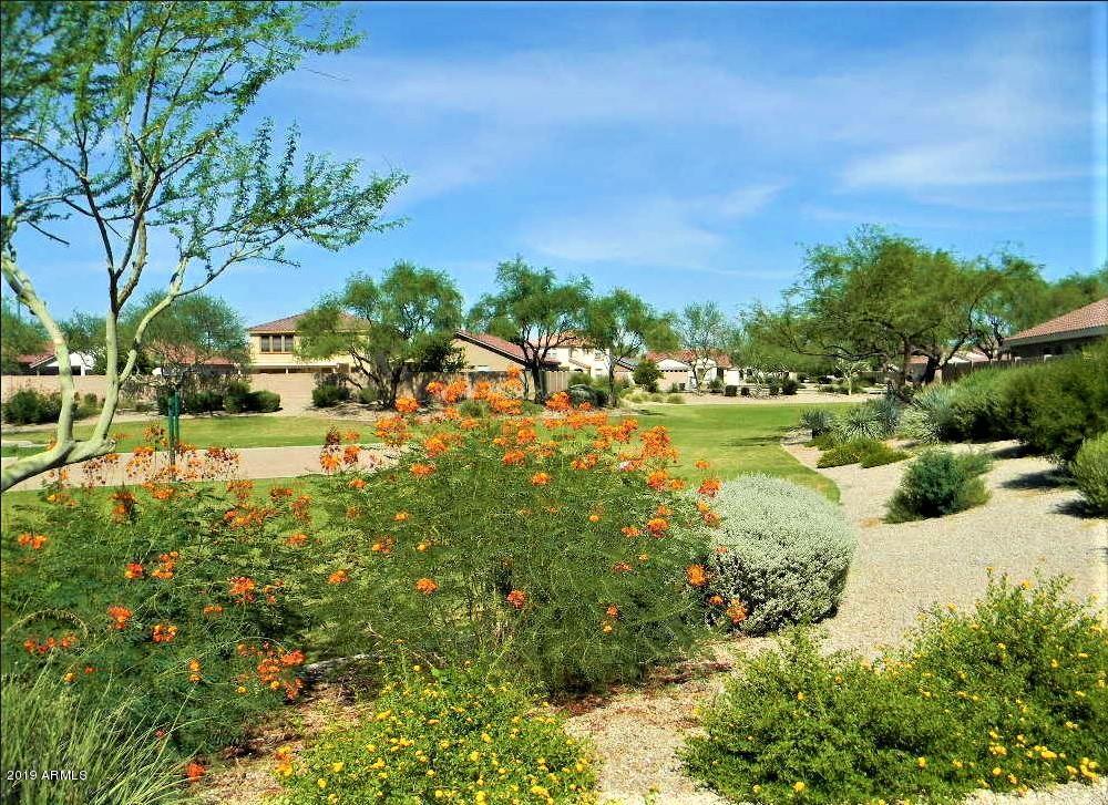 MLS 5880762 655 S PORTER Street, Gilbert, AZ 85296 Gilbert AZ Four Bedroom