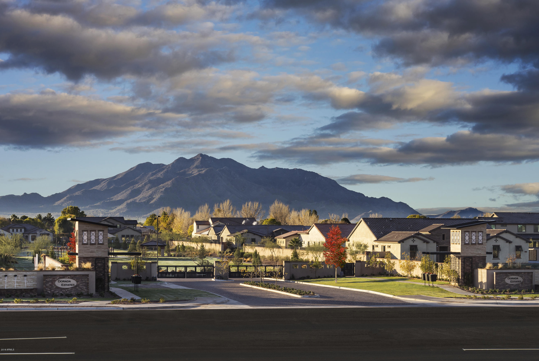 MLS 5896883 17673 E BRONCO Drive Unit 20, Queen Creek, AZ 85142 Queen Creek AZ Scenic