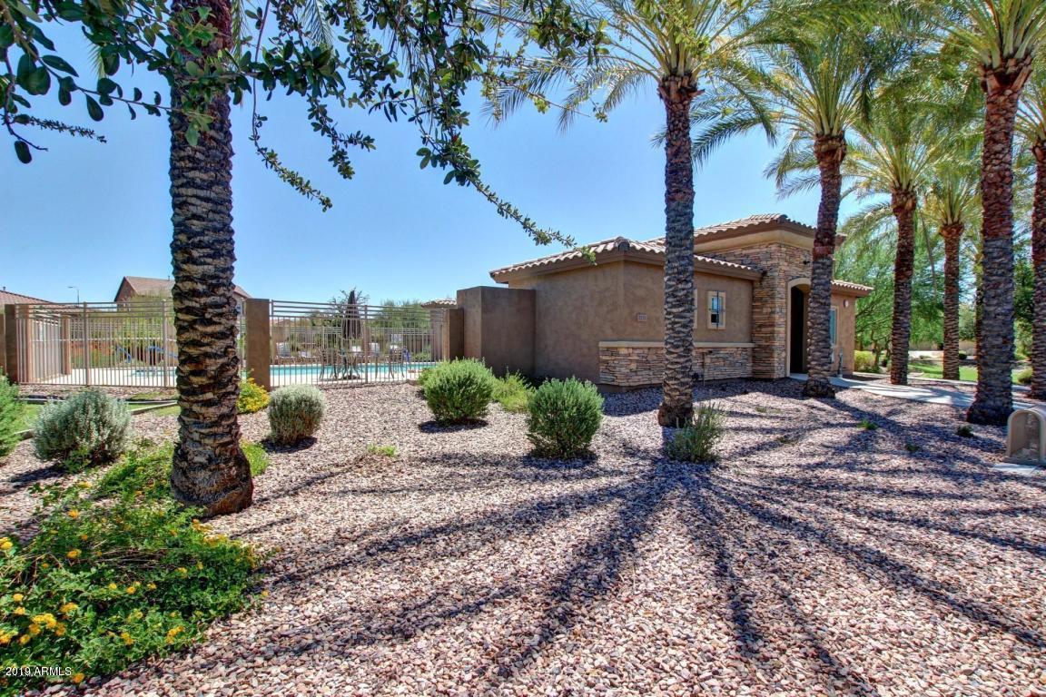 MLS 5896698 1541 W FLAMINGO Drive, Chandler, AZ 85286 Community Pool