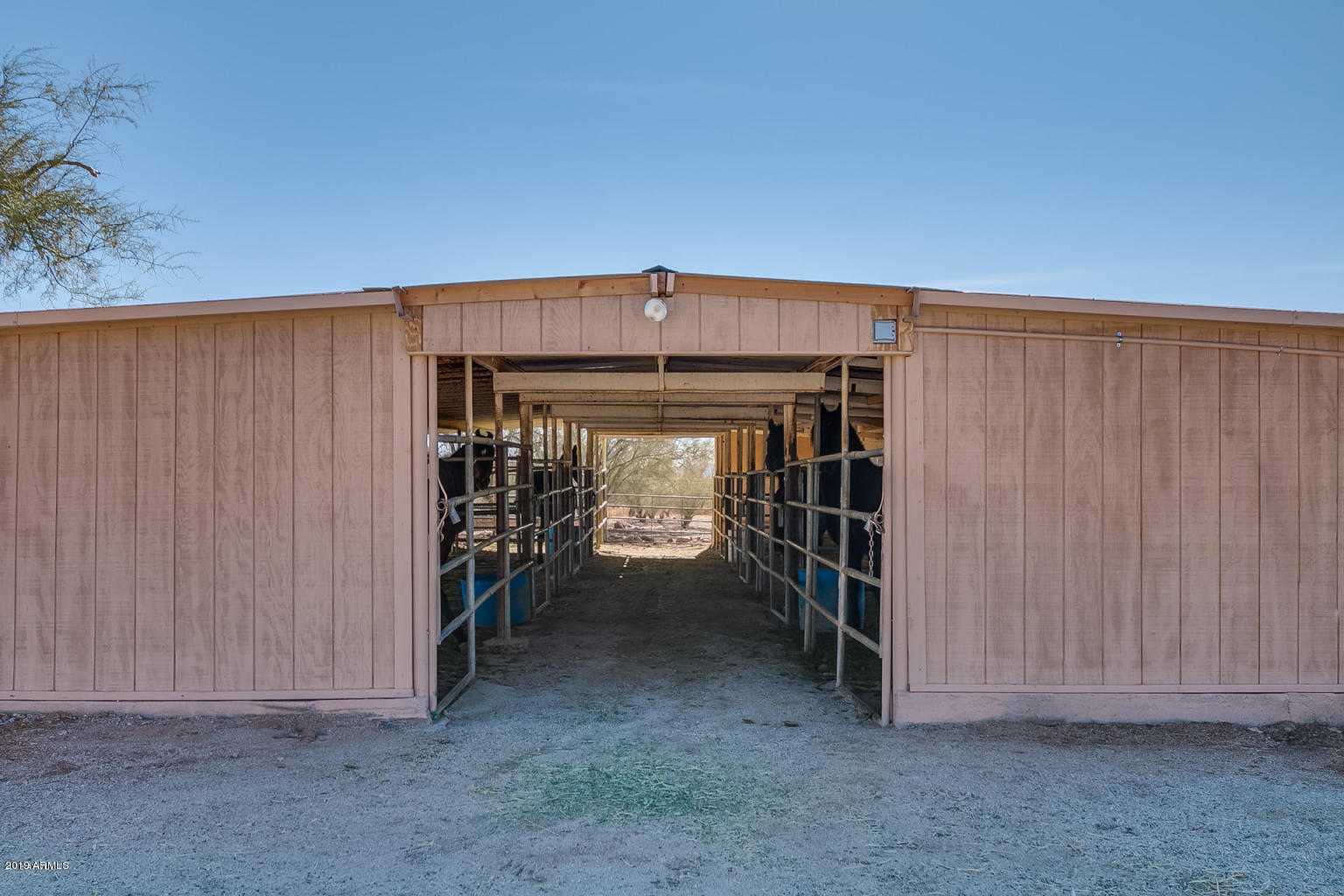MLS 5897357 4143 W DEVIL SPRINGS Road, New River, AZ 85087 New River AZ Equestrian