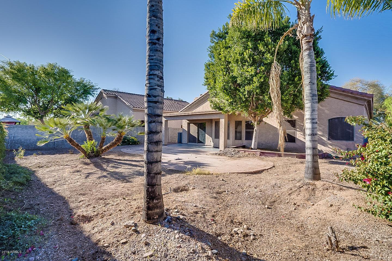 MLS 5900562 779 E STOTTLER Drive, Gilbert, AZ 85296 Gilbert AZ Neely Farms
