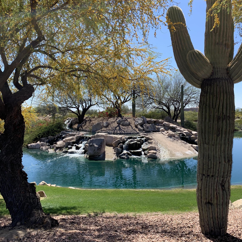 MLS 5903273 4055 N RECKER Road Unit 97, Mesa, AZ 85215 Mesa AZ Red Mountain Ranch