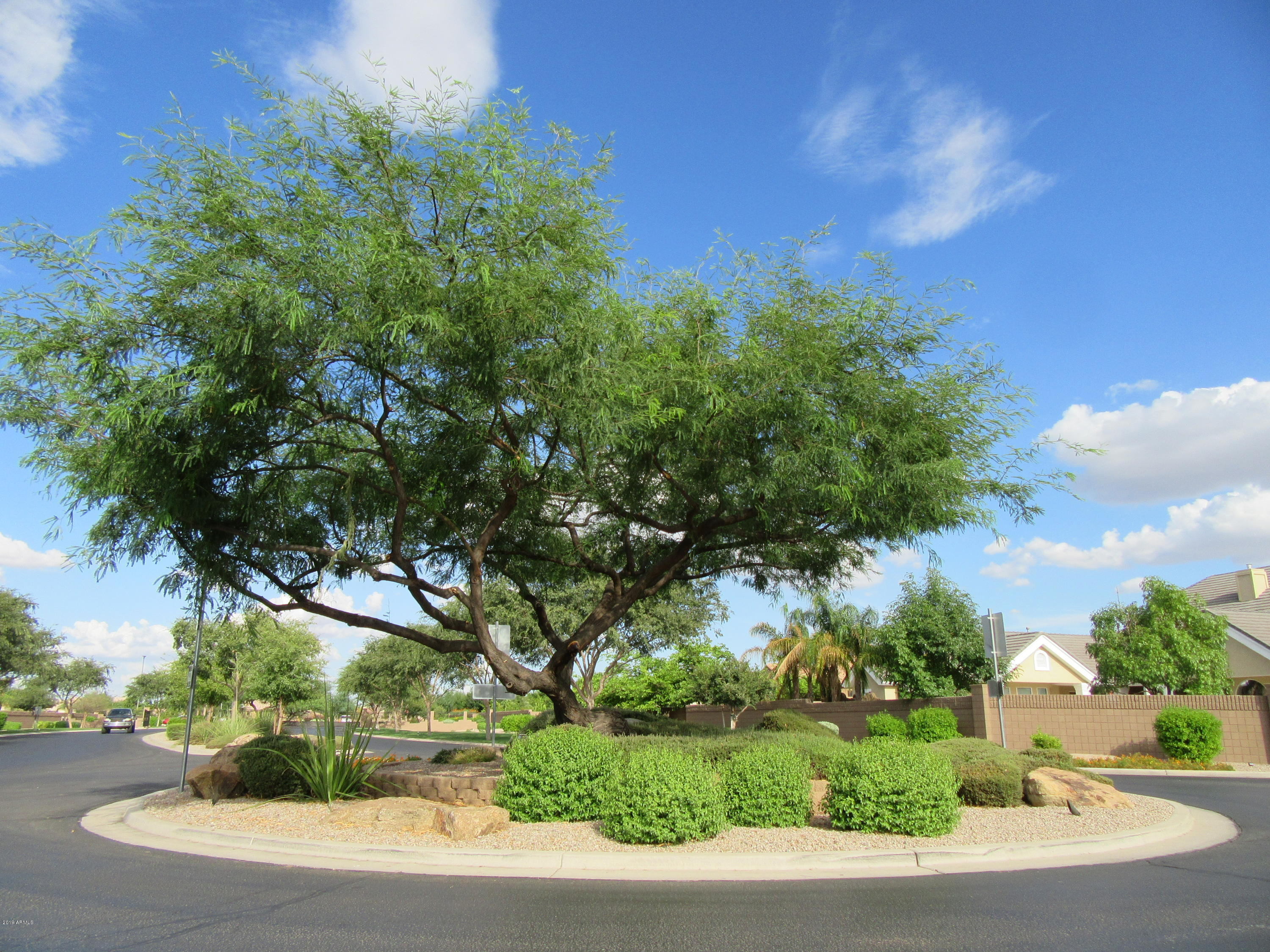 MLS 5896961 3100 E BONANZA Road, Gilbert, AZ 85297 85297
