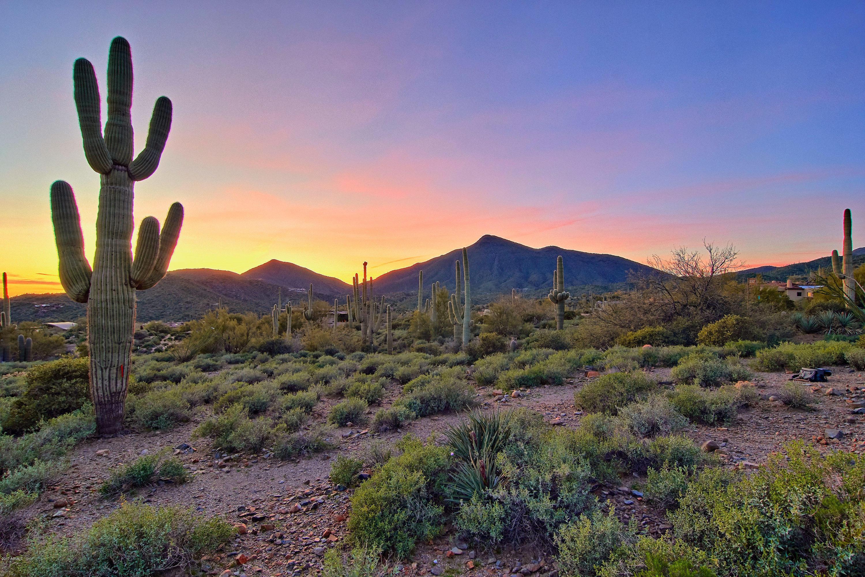 Scottsdale AZ 85262 Photo 9