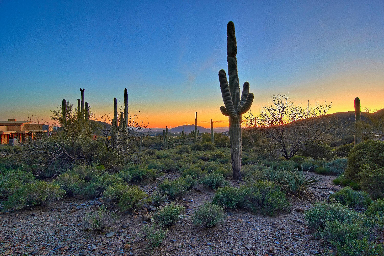 Scottsdale AZ 85262 Photo 15