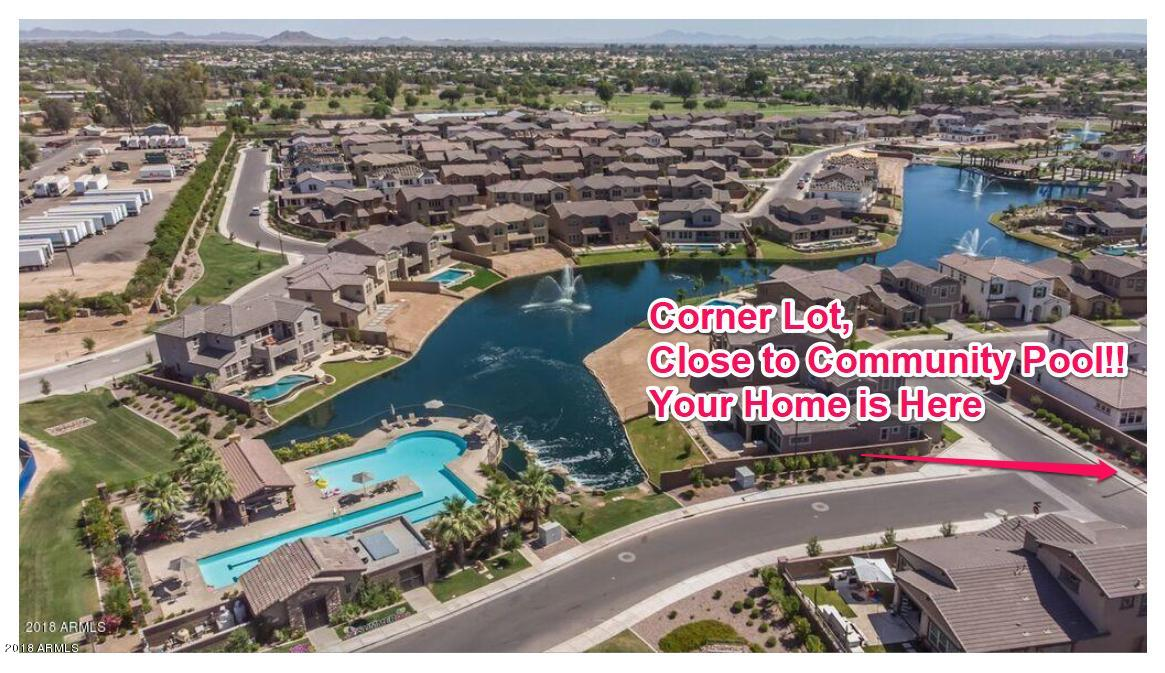 MLS 5922790 919 W YELLOWSTONE Way, Chandler, AZ 85248 Community Pool