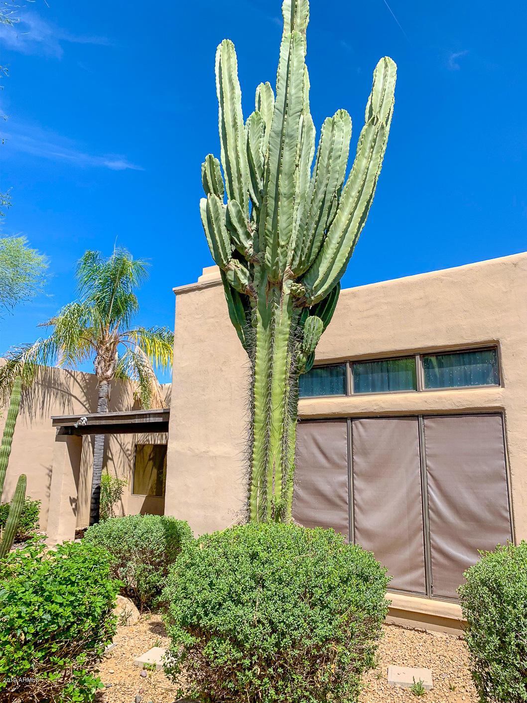 MLS 5923321 4205 E Altadena Avenue, Phoenix, AZ 85028 Phoenix AZ REO Bank Owned Foreclosure