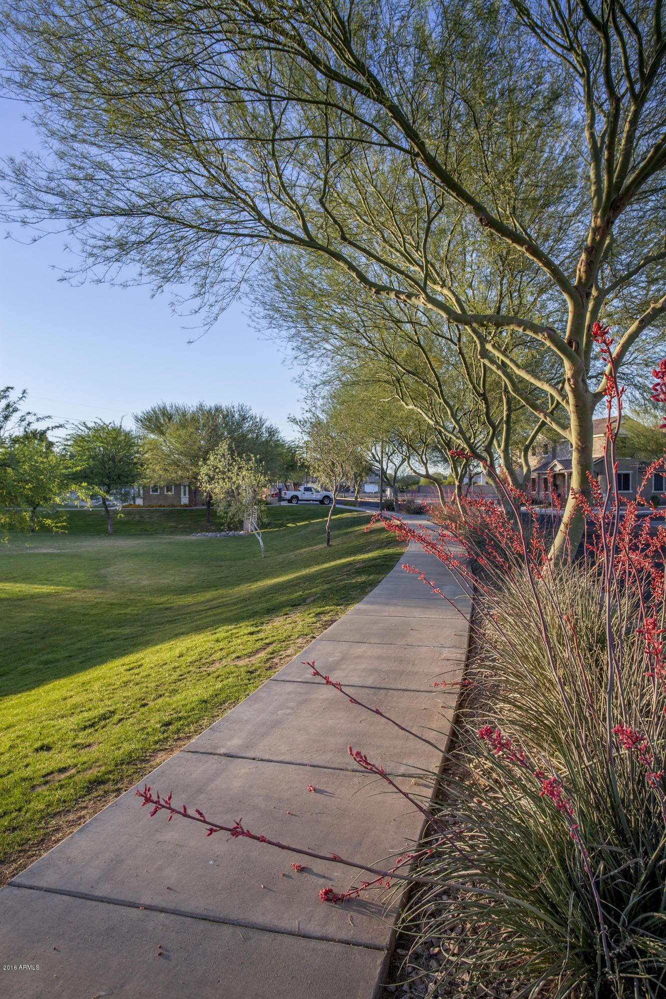 MLS 5928973 17885 N 114TH Lane, Surprise, AZ 85378 Surprise AZ Canyon Ridge West