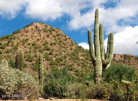 MLS 5939396 2405 W FLORENTINE Road, Phoenix, AZ 85086 Phoenix AZ Tramonto
