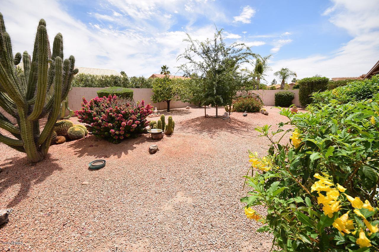 MLS 5953940 11135 E CHESTNUT Court, Sun Lakes, AZ 85248 Sun Lakes AZ Palo Verde