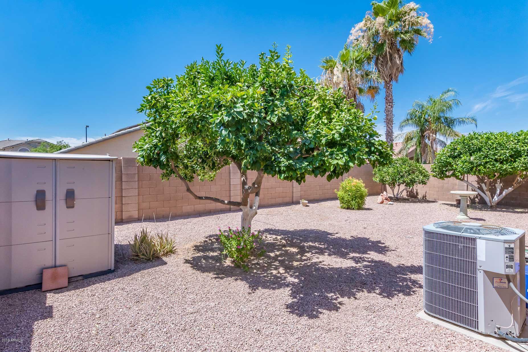 MLS 5945082 12317 W BERRIDGE Lane, Litchfield Park, AZ 85340 Litchfield Park AZ Wigwam Creek