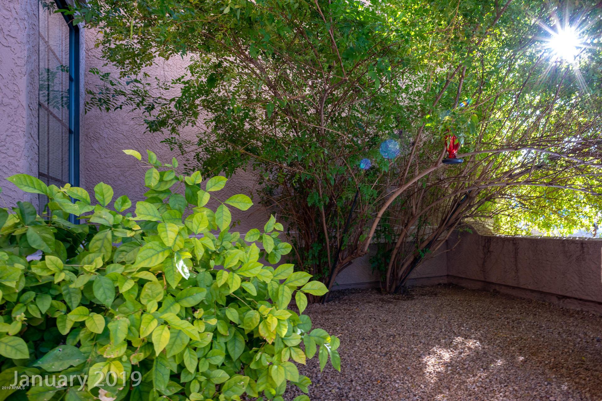 MLS 5947556 16035 N 17TH Street, Phoenix, AZ 85022 Phoenix AZ Moon Valley
