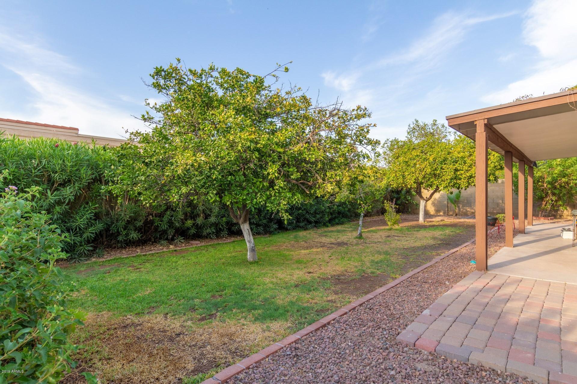 MLS 5954140 1236 W KIVA Avenue, Mesa, AZ 85202 Mesa AZ Dobson Ranch