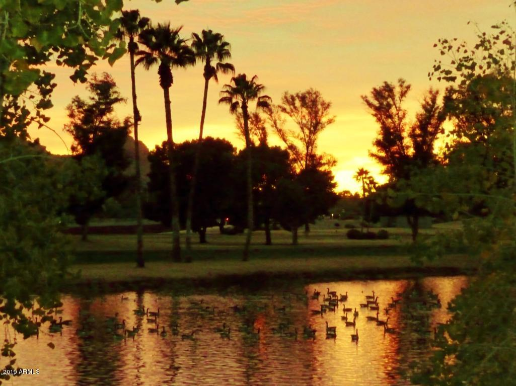 Scottsdale AZ 85258 Photo 15
