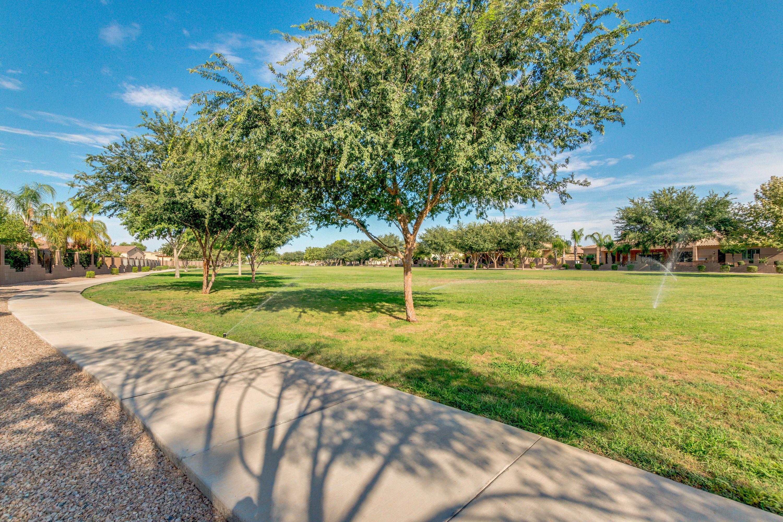 MLS 5955898 2934 E PORTOLA VALLEY Drive, Gilbert, AZ 85297 Gilbert AZ Whitewing