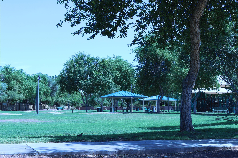 MLS 5930314 1443 W MEAD Drive, Chandler, AZ 85248 Ocotillo Lakes