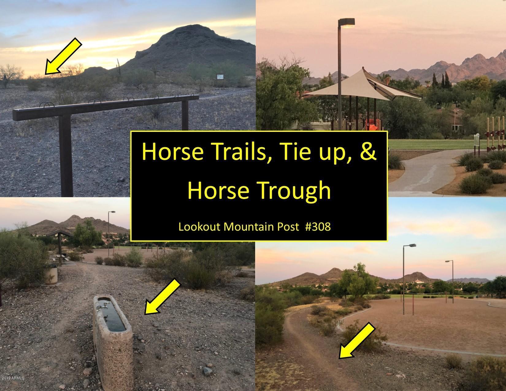 MLS 5907999 2019 E EVERETT Drive, Phoenix, AZ 85022 Phoenix AZ Lookout Mountain