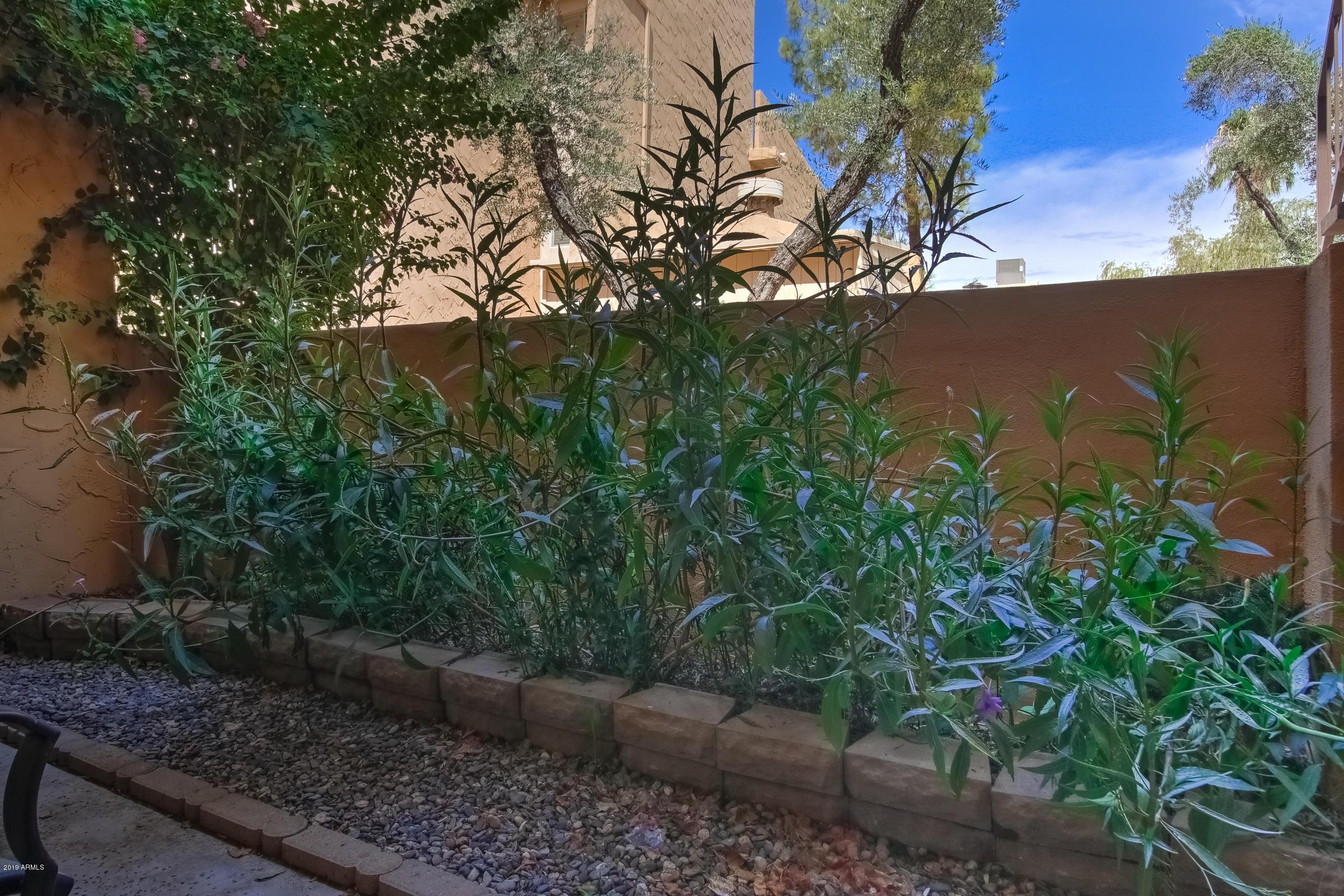 MLS 5959550 8055 E THOMAS Road Unit B103 Building B, Scottsdale, AZ 85251 Scottsdale AZ Old Town Scottsdale