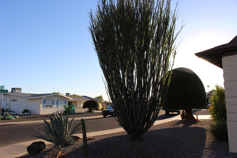 MLS 5964440 9918 W DENHAM Drive, Sun City, AZ 85351 Sun City AZ Adult Community
