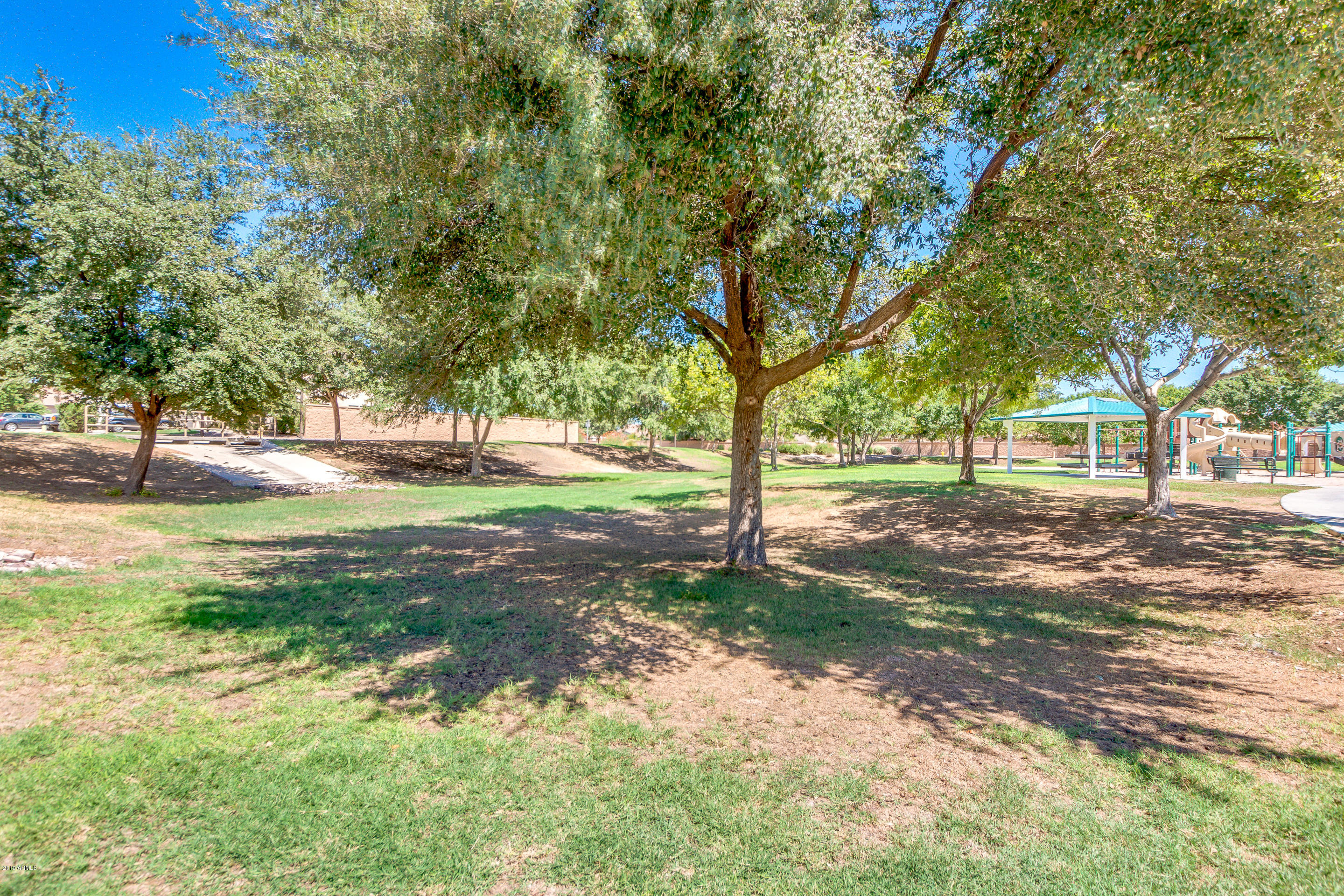 MLS 5971255 32090 N CAT HILLS Avenue, Queen Creek, AZ 85142 Queen Creek AZ San Tan Heights
