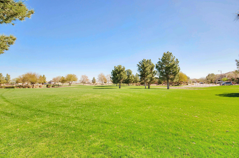 MLS 5968874 19188 E MACAW Drive, Queen Creek, AZ 85142 Queen Creek AZ Cortina