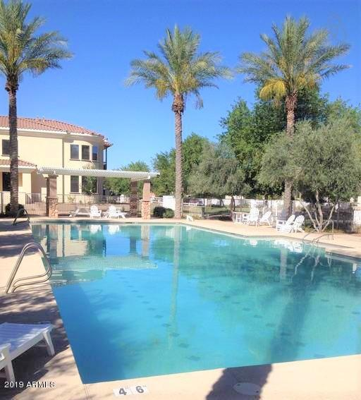 MLS 5968817 2861 E CAMELLIA Drive, Gilbert, AZ Gilbert AZ Agritopia