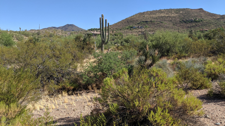 Photo of 9248 E COVEY Trail, Scottsdale, AZ 85262