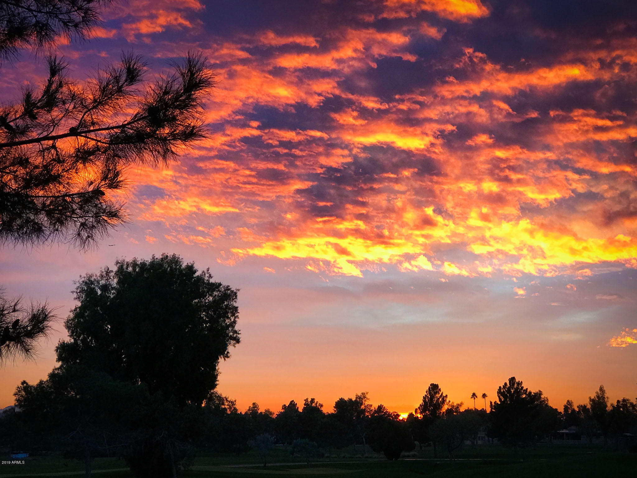 MLS 5971925 8 BILTMORE Estate Unit 124 Building 6, Phoenix, AZ 85016 Phoenix AZ Biltmore
