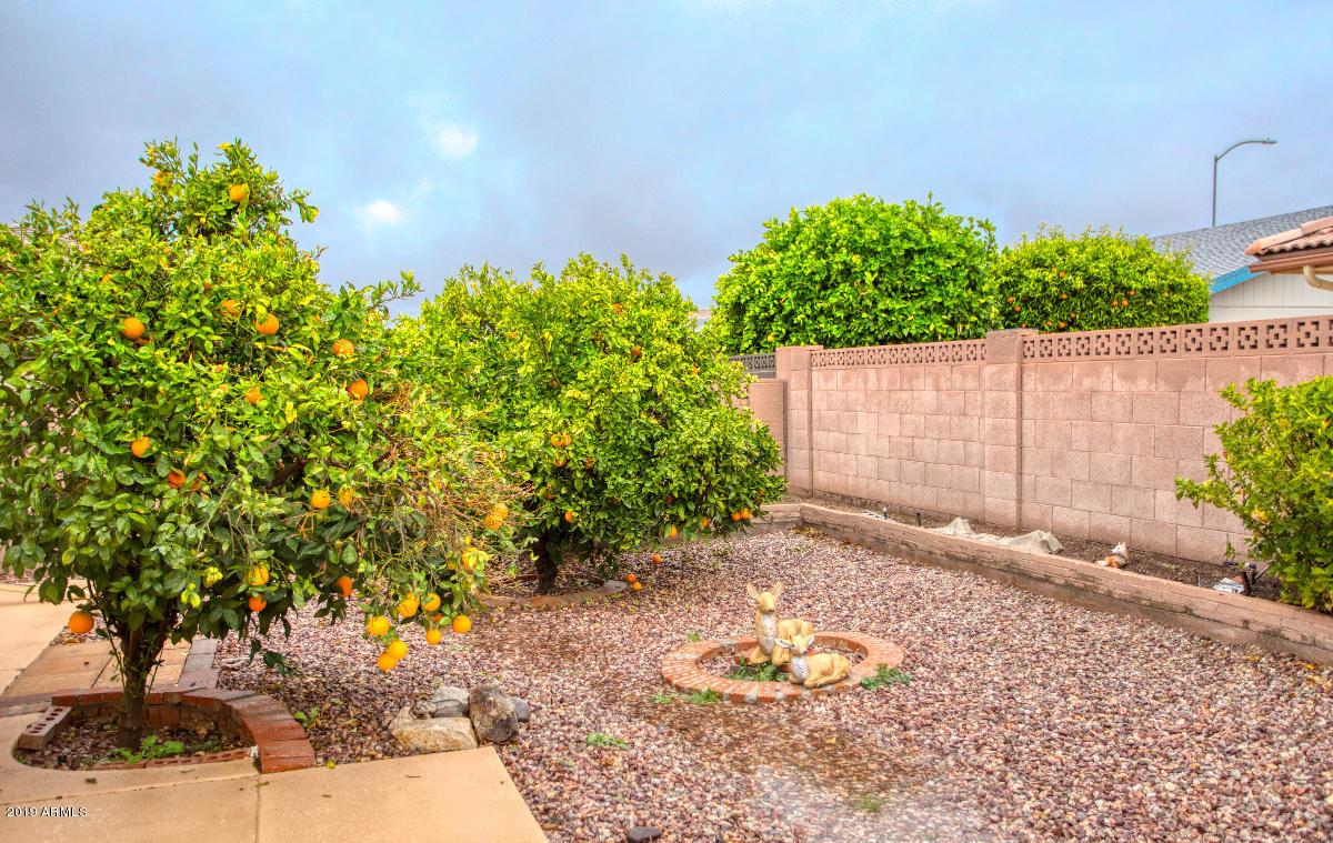 MLS 6017864 8320 E NARANJA Avenue, Mesa, AZ 85209 Mesa AZ Sunland Village East