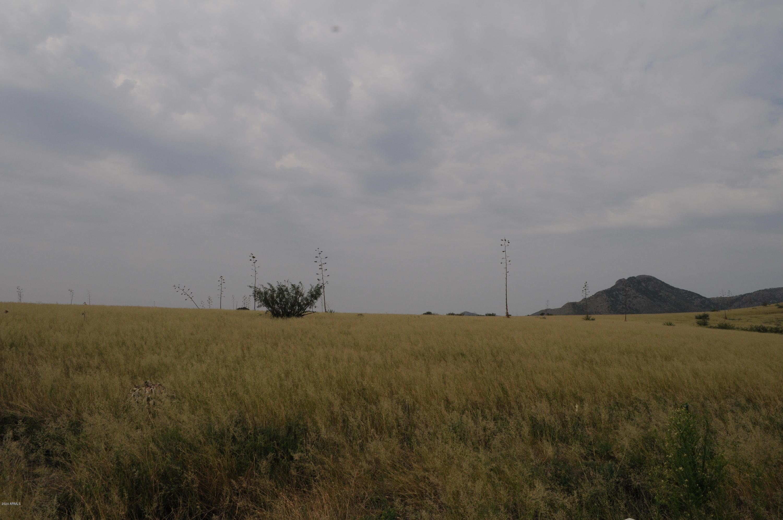 049-D Renagade Trail