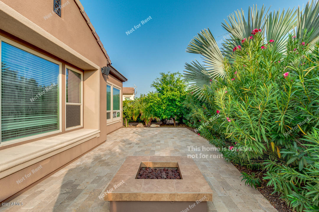 MLS 6135365 1585 E SATTOO Way, San Tan Valley, AZ 85140 San Tan Valley AZ Pool