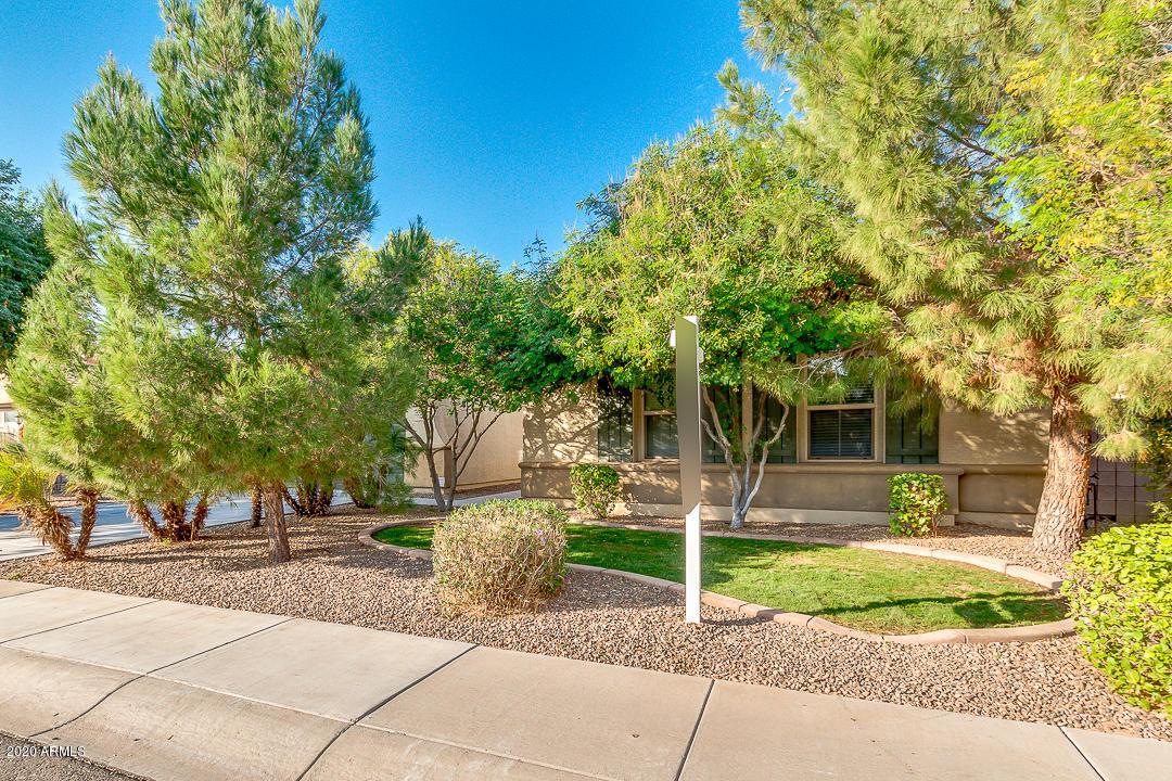 MLS 6156572 2586 E DONATO Drive, Gilbert, AZ 85298 Gilbert AZ Freeman Farms