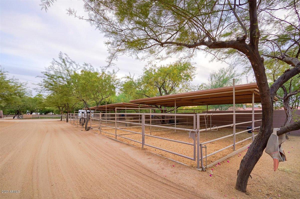 MLS 6161357 2020 E BETHANY HOME Road, Phoenix, AZ 85016 Phoenix AZ Scenic