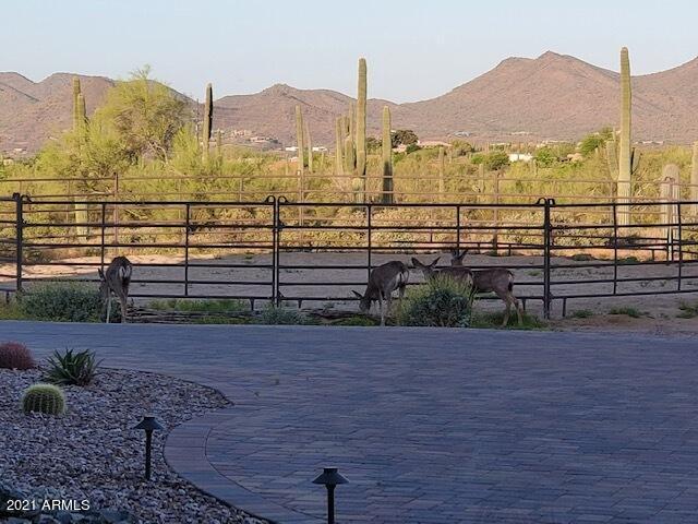 MLS 6216340 41909 N FLEMING SPRINGS Road, Cave Creek, AZ 85331 Cave Creek AZ Equestrian