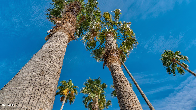 MLS 6249242 5871 S EASY Street, Gold Canyon, AZ 85118 Gold Canyon AZ Luxury