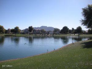 MLS 6269984 4622 E FIRESTONE Drive, Chandler, AZ 85249 Chandler AZ Sun Groves