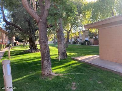 MLS 6268247 6125 E Indian School Road Unit 244, Scottsdale, AZ 85251 Scottsdale AZ Affordable