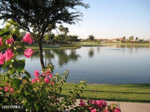 MLS 6294979 9210 E CEDAR WAXWING Drive, Sun Lakes, AZ Sun Lakes AZ Luxury
