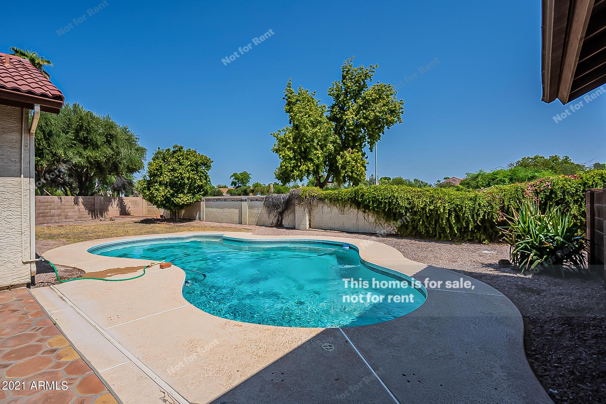 MLS 6296670 1409 N ALDER Drive, Chandler, AZ 85226 Community Pool