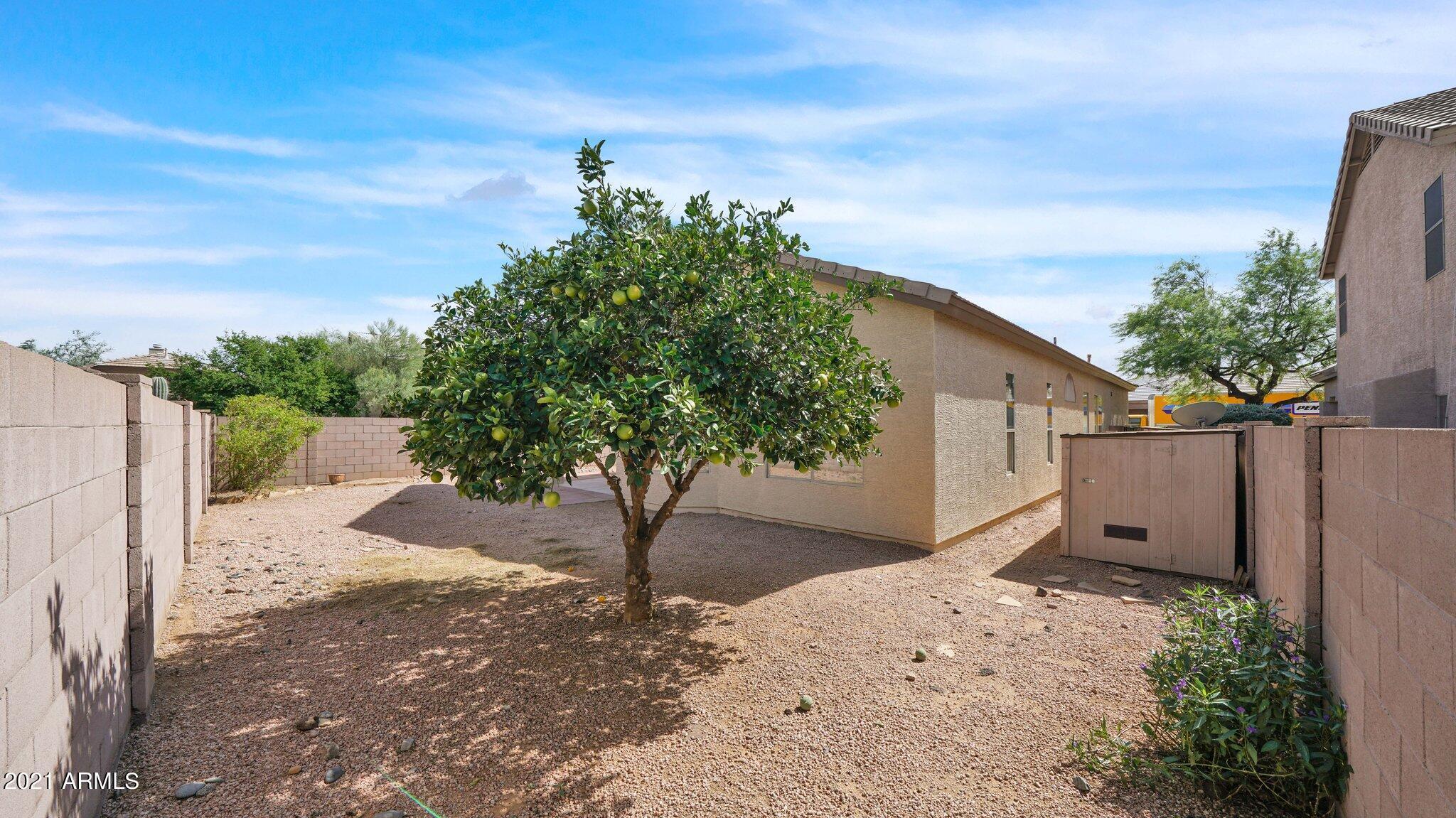 MLS 6307068 4726 E PASO Trail, Phoenix, AZ 85050 Phoenix AZ Tatum Highlands
