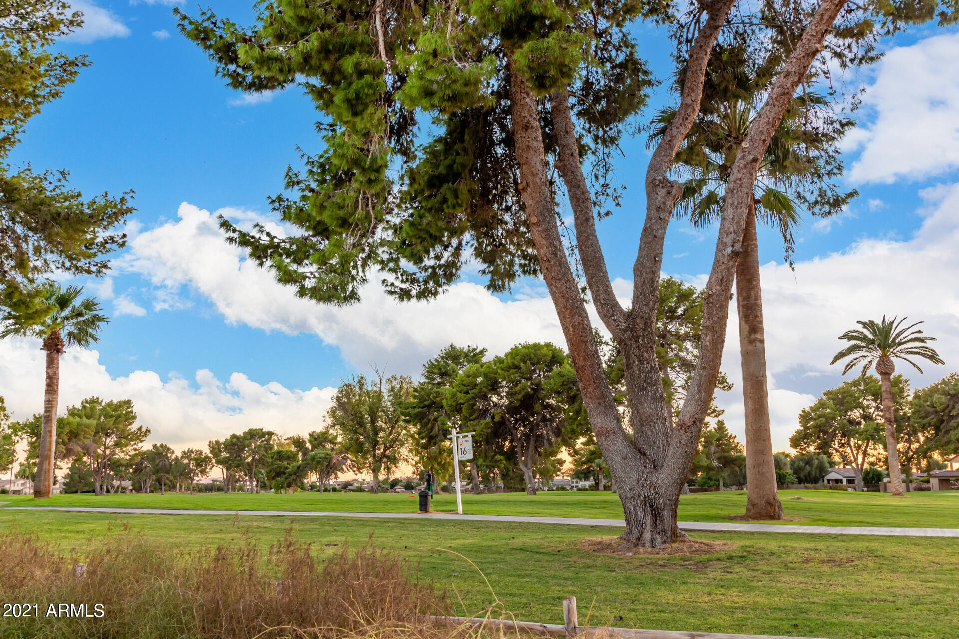 MLS 6303856 4872 N BARRANCO Drive, Litchfield Park, AZ Litchfield Park AZ Luxury