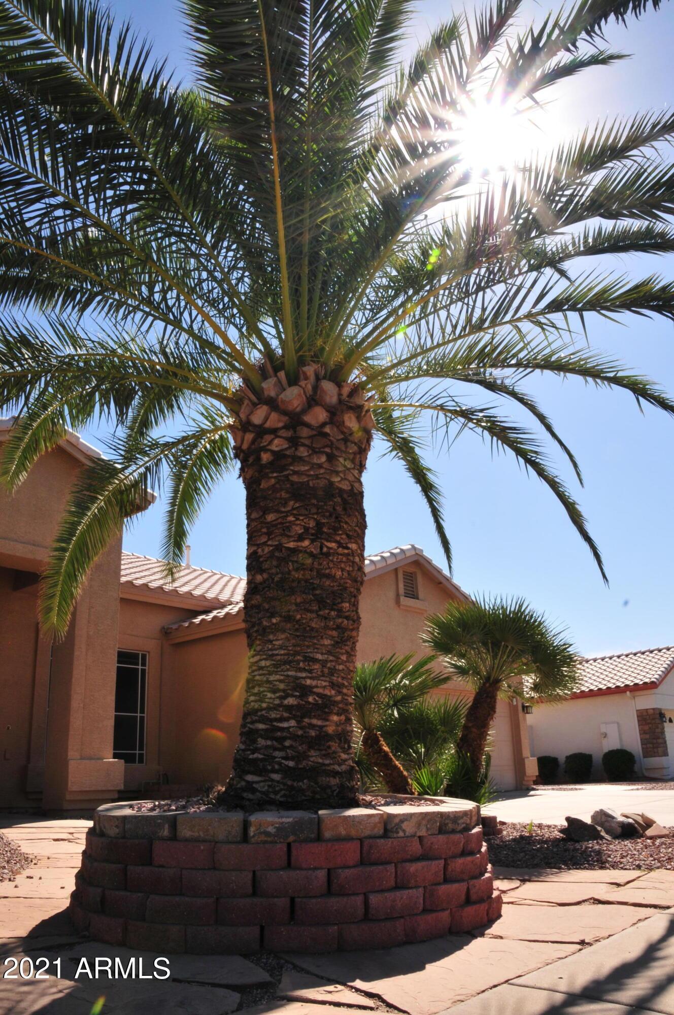 MLS 6308486 61 S MARIN Drive, Gilbert, AZ Gilbert AZ Finley Farms