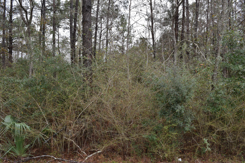 MLS Property 668031 for sale in Defuniak Springs