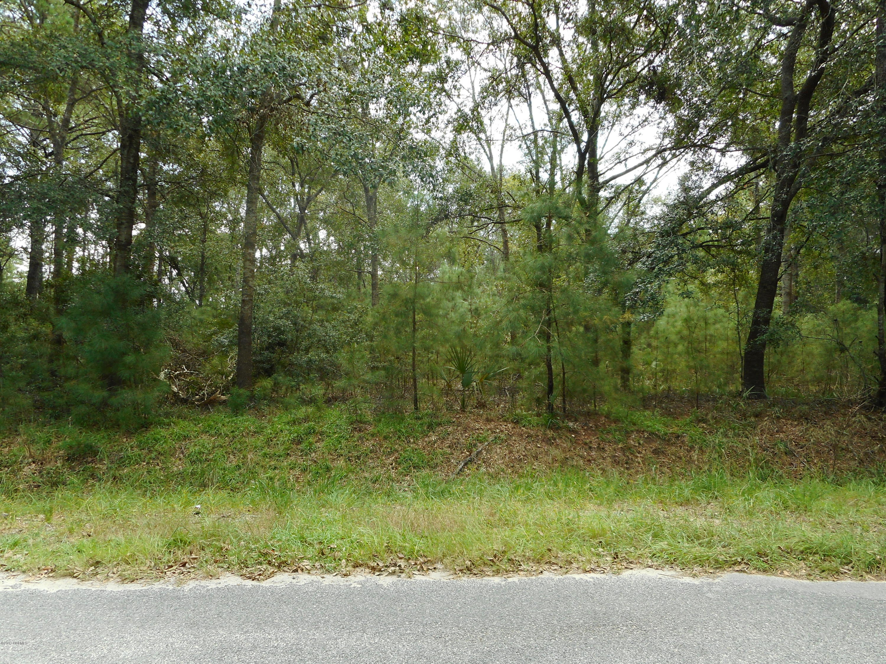 Photo of 197 A Gannet Point Road, Beaufort, SC 29907