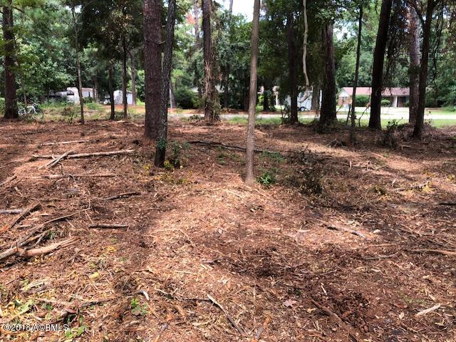 Photo of Tbd Wallace Road, Lady's Island, SC 29907