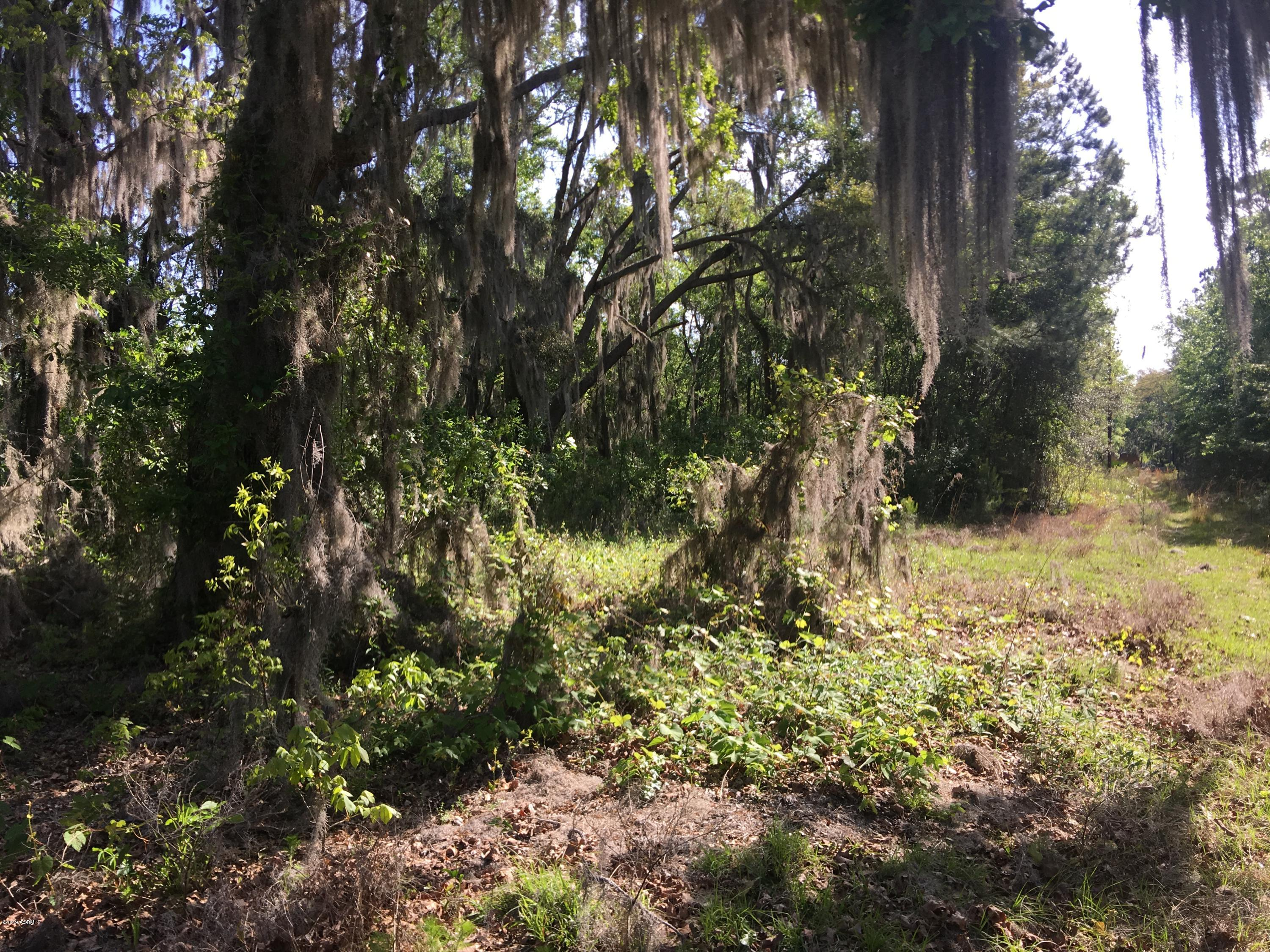 Photo of Lot 3 Dr. Martin Luther King Jr. Drive, St. Helena Island, SC 29920